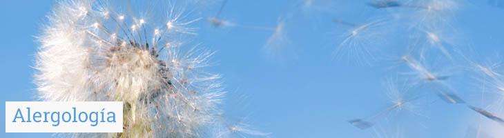 Alergología | Clinimur